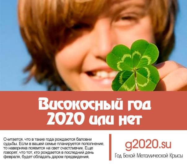 Високосный год 2020 или нет