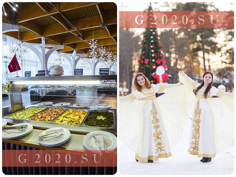 Новый год 2020 в Подмосковье. Коттеджи, дома отдыха с программой
