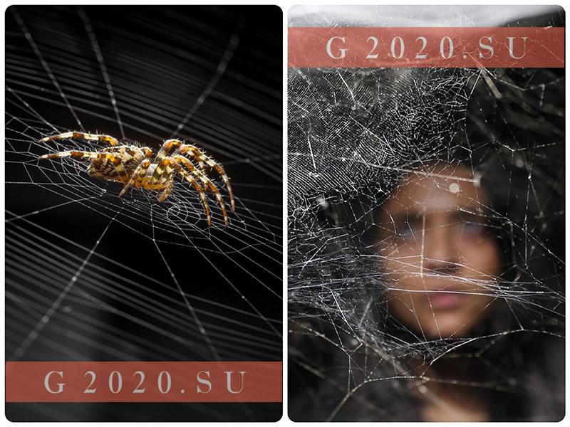 Символ 2020 года по русскому календарю. Какое животное у славян