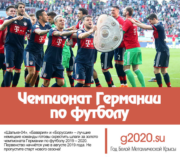 Чемпионат Германии по футболу 2019 – 2020