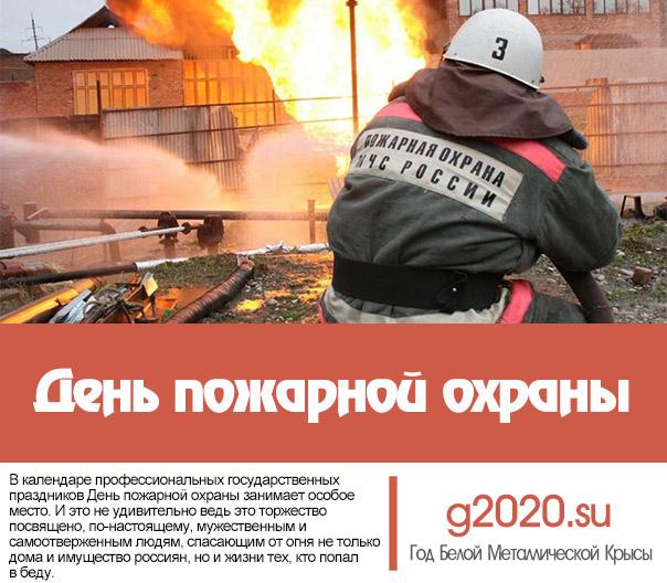 День пожарной охраны 2020