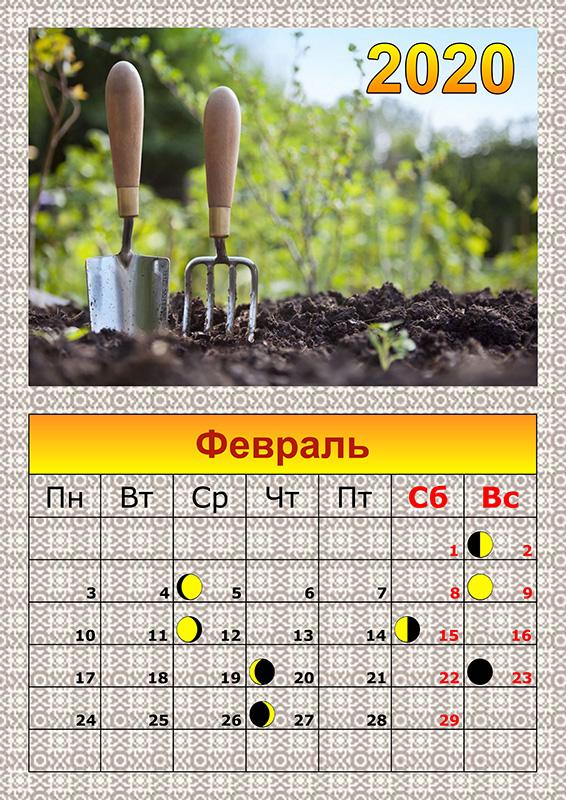 Лунный посевной календарь на 2020 года садовода и огородника на февраль