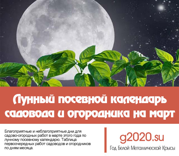 Лунный посевной календарь на 2020 года садовода и огородника на март