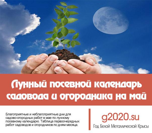 Лунный посевной календарь на 2020 года садовода и огородника на май
