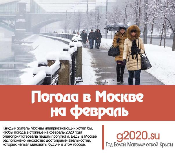 Погода в Москве на февраль 2022