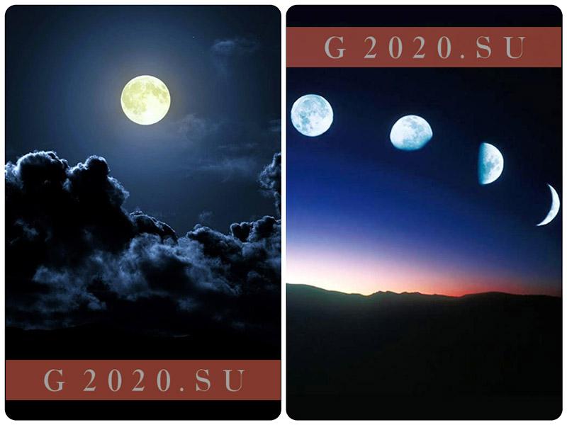 Лунный календарь на январь 2020 года благоприятные дни для стрижки, свадьбы, садовода и огородника