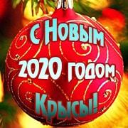 Поздравления с Новым годом 2020 прикольные