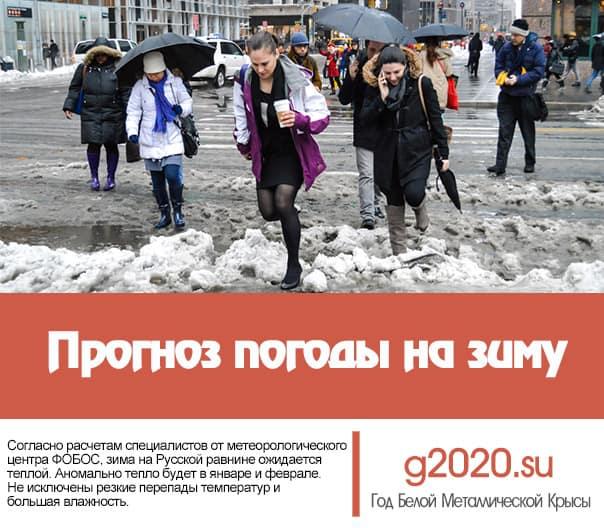 Прогноз погоды на зиму 2021-2022