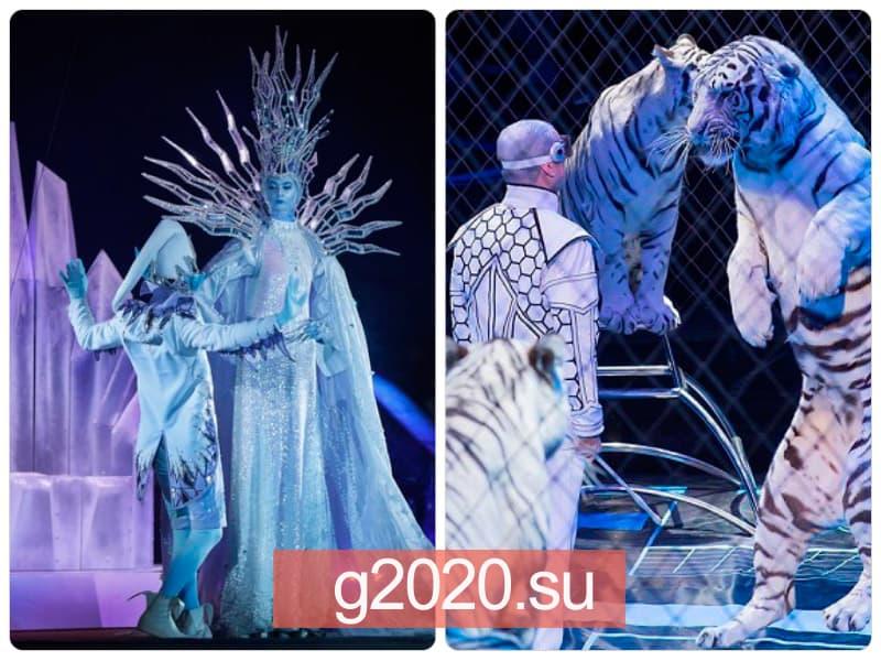 Запашные - новогоднее представление 2021-2022